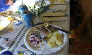 2015-08-20 Surströmming i Kista Hembygdsgård